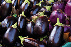 Fresh aubergines. On market closeup royalty free stock images