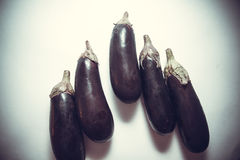 Fresh aubergines Royalty Free Stock Images