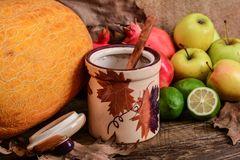 Fresh autumn colorful fruits Royalty Free Stock Images