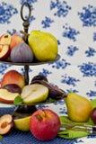 Fresh autumn fruit Stock Photos
