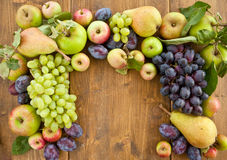 Fresh autumn fruits Stock Images