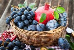 Fresh autumn fruits Stock Photography