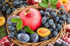 Fresh autumn fruits Stock Photos
