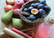 Fresh autumn fruits Royalty Free Stock Image