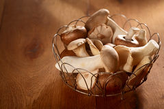 Fresh autumn harvest of King Oyster mushrooms. Pleurotus eryngii, collected in a rustic wire basket and displayed over a soft brown background with copyspace royalty free stock photography