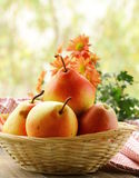Fresh autumn   juicy pear Stock Image