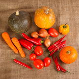 Fresh autumn vegetables lie on sacking Stock Photo