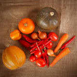 Fresh autumn vegetables lie on sacking Stock Images