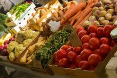 Fresh Autumn Vegetables Royalty Free Stock Photos