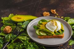 Fresh avocado breakfast with egg poached sandwich. Green salad a. Fresh avocado breakfast with egg benedict sandwich. Green salad and seeds, healthy vegetarian Stock Images
