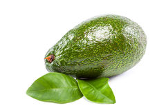 Fresh avocado fruit with leaves on white background. Stock Photo