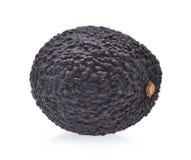 Fresh avocado isolated on white background Royalty Free Stock Photos