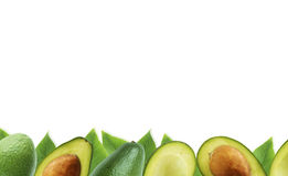 Fresh avocado with leaves on white background Royalty Free Stock Images
