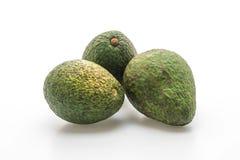 Fresh avocado on white background royalty free stock images