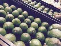 Fresh avocados Stock Image