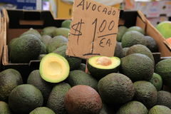 Fresh avocados piled high at farmers market Royalty Free Stock Photos