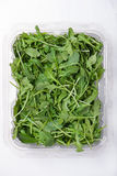Fresh baby arugula in a container. Fresh baby arugula in a plastic container on a white background, vertical, top view stock photography