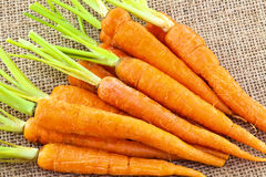 Fresh baby carrots Royalty Free Stock Image