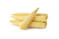 Fresh baby corn on white. Background Royalty Free Stock Images