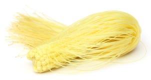 Fresh baby corns Stock Images