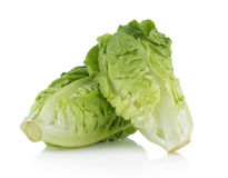 Fresh baby cos (lettuce) on white background Stock Image