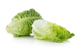 Fresh baby cos (lettuce) on white background Stock Photography