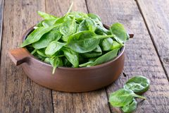 Fresh baby spinach royalty free stock photo
