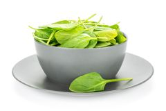 Fresh raw green baby spinach isolated on white stock images