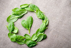 Fresh Baby spinach leaves on sackcloth background. Top view with copy space, round circle frame. Love, Healthy, Ecology Royalty Free Stock Images