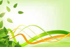 Fresh background with leaf Stock Photography