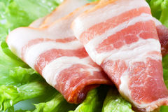 Fresh bacon on salad leaves. Macro Royalty Free Stock Photography