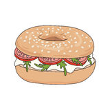 Fresh bagel sandwich with cream cheese, rucola and tomato. Sesame seeds on top. Vector illustration. Royalty Free Stock Photo