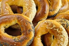 Free Fresh Bagels Stock Photography - 5569712