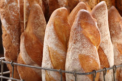 Fresh baguettes in metal basket in bakery Royalty Free Stock Photography