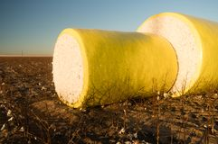 Fresh Bail Harvest Cotton Farm Field Texas Agriculture Stock Photos