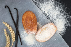 Fresh bake mini cake madeleines icing sugar on top with vanilla bean and teaspoon of sugar. On black slate plate Royalty Free Stock Photography