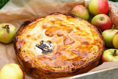 Fresh baked apple pie and apples. Royalty Free Stock Image