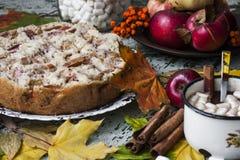 Fresh baked apple pie Stock Images