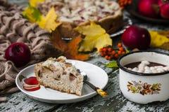 Fresh baked apple pie Stock Photography