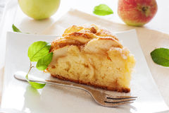 Fresh baked apple pie Stock Images