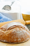 Fresh Baked Artisan Bread Stock Image