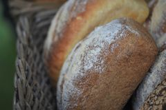 Fresh baked artisan loaves of bread in a basket. Loaves of baked bread in a basket dusted with flour for a rustic image. Artisan homemade bread from England UK royalty free stock photography
