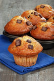 Fresh baked banana chocolate muffins Royalty Free Stock Photography