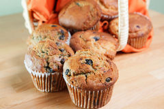 Fresh baked blueberry muffins Stock Images