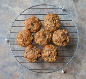 Fresh Baked Bran Muffins. Freshly baked bran muffins cooling on a rack Royalty Free Stock Image
