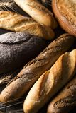 Fresh baked bread background, variety of different kind of breads, food industry Royalty Free Stock Image