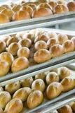 Fresh Baked Bread in Baking Racks Royalty Free Stock Photography
