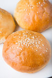 Fresh baked bread bun Royalty Free Stock Images