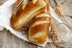 Fresh baked bread buns Stock Photography