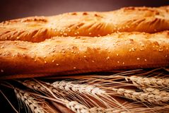 Fresh baked bread with wheat Royalty Free Stock Photography